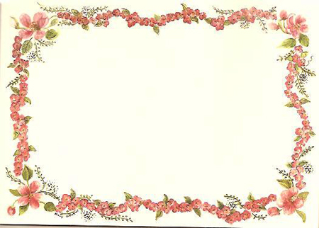 APPLE BLOSSOM BORDER NOTE CARDS