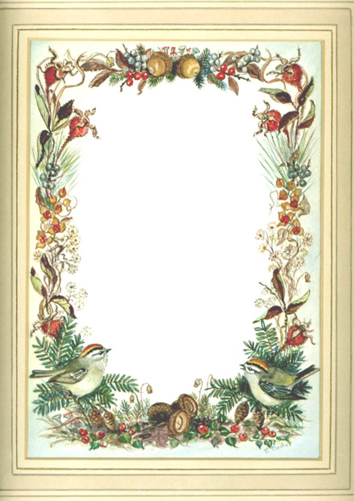 Christmas Card Border.Fall Border For Christmas Card Irene Dash No Ft 93 82f On Cellar Door Books