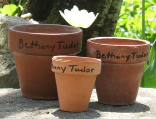 3 FLOWER POTS FROM TASHA TUDOR'S GARDEN