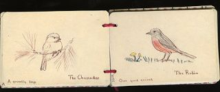 JENNY WREN COLOURING BOOK NO. II BIRDS; for The Furtherence of Knowledge of Nature in the Young