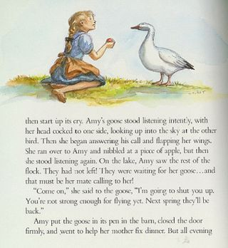 AMY'S GOOSE
